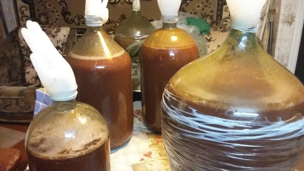 Домашние рецепты сливянки в домашних условиях 960