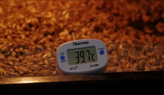 Температурные паузы на примере односолодового затора для виски